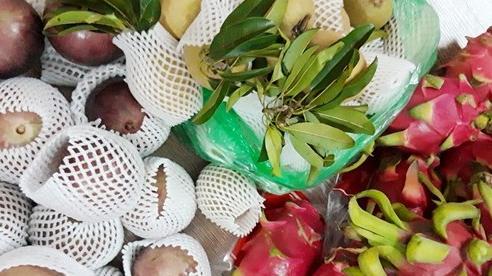 Xuất khẩu rau quả đạt gần 2 tỷ USD