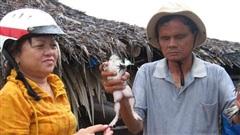 Từng nghèo nên càng thương người nghèo, người phụ nữ Tây Ninh giúp nhiều nông dân đổi đời
