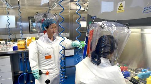 Phòng thí nghiệm bị nghi rò rỉ virus corona mở cửa chào đón phóng viên Mỹ