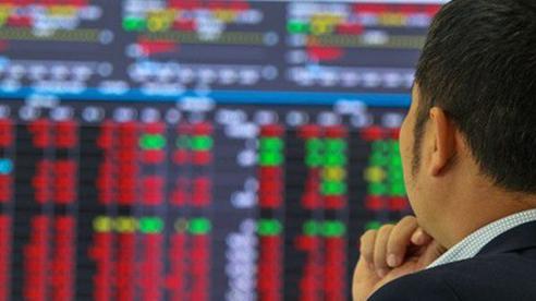 Chứng khoán lại chịu áp lực giảm: Nhà đầu tư có dám bắt đáy?