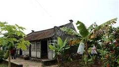 Ngôi nhà Bá Kiến 100 năm tuổi nhưng là 'báu vật' làng Vũ Đại
