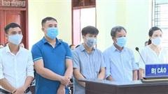 5 cựu cán bộ TP Thanh Hóa 'hô biến' lúa thành hoa ly bị đề nghị từ 6 tháng đến 6 năm tù