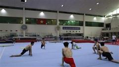 UNESCO mong muốn đưa VĐV quốc tế sang tập huấn tại Việt Nam: Nâng tầm lợi thế và uy tín của thể thao Việt Nam