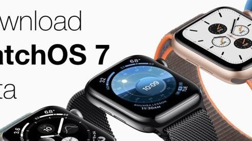 Hướng dẫn cập nhật phiên bản watchOS 7 Public beta mới nhất cho Apple Watch