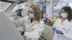 Công ty dược thử nghiệm thuốc chứa kháng thể để trị COVID-19