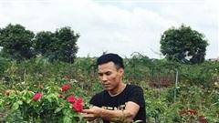 10 năm bôn ba vẫn tay trắng, về quê vui với vườn hồng 'nở' 4 tỷ/năm