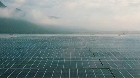 Năng lượng tái tạo ở Việt Nam: Đừng lãng phí 'Của Giời' cho