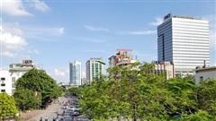 'Xanh mắt' với những con đường phủ đầy cây tại Hà Nội