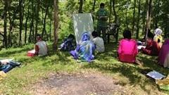 Cả trường trải bạt ngồi giữa rừng để học trong mùa Covid-19