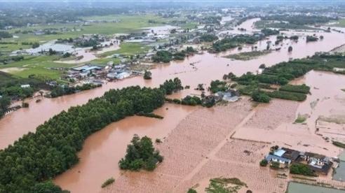 Sông Trường Giang hứng đợt lũ thứ 4, đập Tam Hiệp 'gồng mình' chống đỡ
