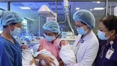 Cứu sống 3 trẻ sinh non từ sản phụ mang tam thai hiếm gặp
