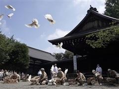 Hàn Quốc quan ngại về việc các quan chức Nhật Bản viếng đền Yasukuni