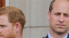 Hoàng tử William 'không nói chuyện với Harry suốt 2 tháng'
