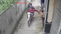 Người đàn ông bị giật điện thoại khi chơi game trước cửa nhà, hành động táo tợn của tên cướp thực sự khiến người ta kinh hãi