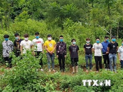 Cao Bằng: Bắt giữ, cách ly 15 người nước ngoài nhập cảnh trái phép
