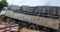 4 người trên xe tải thoát chết nhờ hốc cứu nạn trên đèo Lò Xo