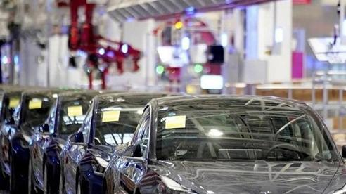 Khách hàng TQ gặp rắc rối vì mua chung xe Tesla giá rẻ trên mạng