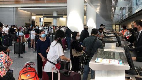 Đưa hơn 340 công dân Việt Nam từ sân bay San Francisco, Mỹ về nước