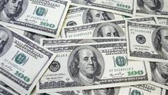 Tỷ giá ngoại tệ ngày 22/8: USD tăng giá