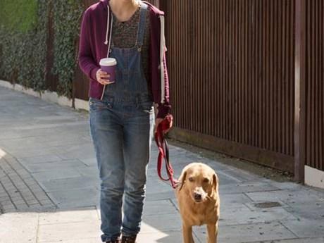Đức yêu cầu người nuôi chó phải đưa chó đi dạo 2 lần mỗi ngày