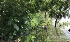 Phát hiện thi thể nam giới dưới con rạch ở Sài Gòn