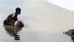 Nam thanh niên nhảy xuống sông Tô Lịch cứu cụ bà chới với dưới dòng nước đen