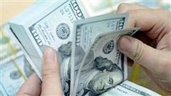 Tỷ giá ngoại tệ hôm nay (23/8): Phục hồi nhưng vẫn ở mức thấp
