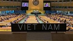 Liên Hợp Quốc họp phiên toàn thể lần đầu sau 6 tháng