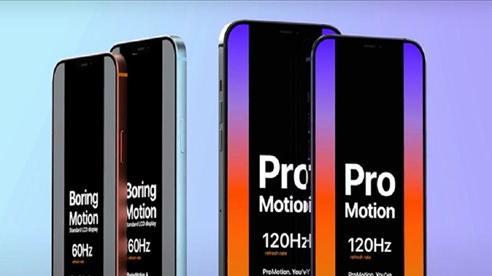 Apple đang gặp rắc rối liên quan đến màn hình iPhone 12