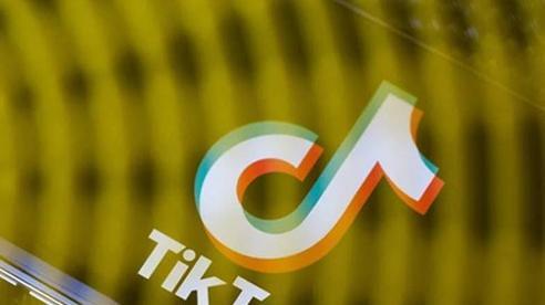 Oracle nhận nhiều hậu thuẫn đắc lực trong cuộc đua thâu tóm TikTok