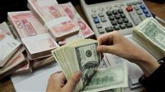 Tỷ giá ngoại tệ ngày 26/8, USD ngập ngừng chờ chính sách mới