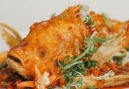 Từ vụ ngộ độc cá hồng, chuyên gia chỉ rõ những bộ phận này tuyệt đối không nên ăn