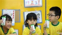 Đảm bảo việc uống sữa học đường đầy đủ cho học sinh khi tựu trường