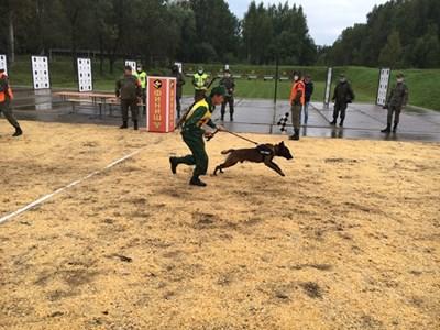Đội tuyển Huấn luyện chó nghiệp vụ hoàn thành bài thi với kết quả đáng khích lệ