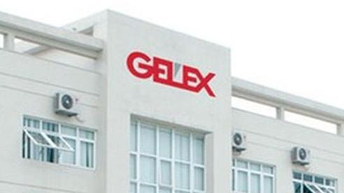 CEO Gelex Nguyễn Văn Tuấn đăng ký mua tiếp 20 triệu cổ phiếu