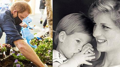 23 năm ngày mẹ chồng mất, vợ chồng Meghan Markle và Hoàng tử Harry đã lộ diện và hành động ý nghĩa