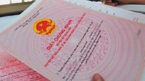 Đình chỉ công tác Giám đốc văn phòng Đăng ký đất đai quận Sơn Trà, Đà Nẵng