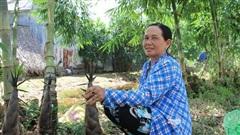 Thu lãi trăm triệu nhờ trồng loại cây bán không bỏ thứ gì