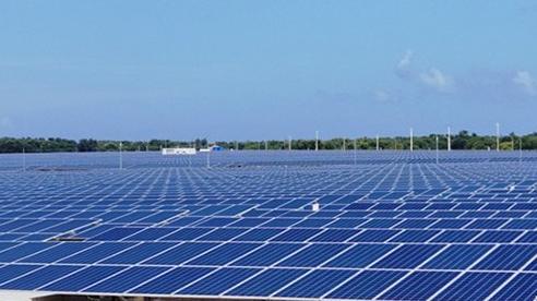 Lưới điện khó 'chạy đua' với điện gió, mặt trời