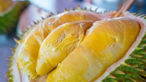 Bất chấp giá cả, dân Việt vẫn ăn đều loại sầu riêng đắt nhất thế giới, thậm chí 'cháy hàng'
