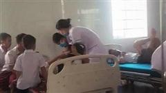 Hàng chục học sinh tiểu học nhập viện cấp cứu vì bị ong đốt