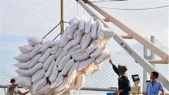 Chính sách nhập khẩu gạo thay đổi, nửa đầu năm 2020 Vinafood II tăng gấp 3 lần mức lỗ lên hơn 160 tỷ đồng