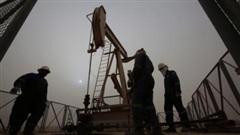 Giá xăng dầu hôm nay 12/9: Tiếp tục suy giảm do nhu cầu đi xuống