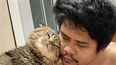 Vợ bóc phốt 'tiểu tam' mèo vì bị 'cướp chồng'