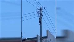 Thất tình tự tử đu dây điện, nam thanh niên gián tiếp khiến một cụ bà tử vong