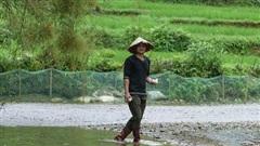 Thanh Hóa: Lồng ghép hiệu quả các chương trình, chính sách giảm nghèo