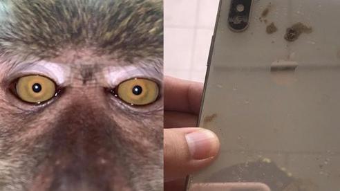 Tìm thấy iPhone mất tích, khổ chủ chỉ biết dở khóc dở cười với ảnh tự sướng của 'kẻ trộm'