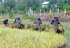 Nhờ có bộ đội Trung đoàn 95