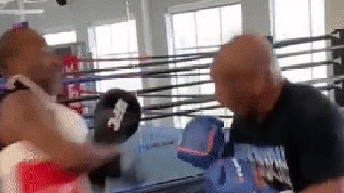 Quá sung trên sàn tập, Mike Tyson suýt đấm gục cả HLV