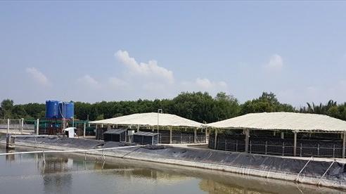 ADM giảm cường độ sử dụng nước và chất thải chôn lấp